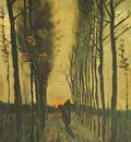 Avenue of Poplars at Sunset