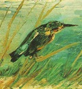 Kingfisher, The