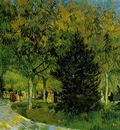 Lane in the Public Garden at Arles, A