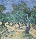 olive grove version