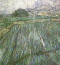 Wheat Field in Rain