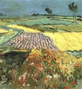 Wheat Fields near Auvers