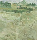 Wheat Fields with Auvers in the Background