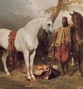 Alfred Dedreux The Mounts of Abd El Kader