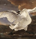 Jan Asselyn The Threatened Swan