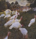 Turkeys [1876]