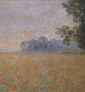 Oat and Poppy Field [1890]
