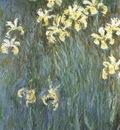 Yellow Irises [1914 1917]