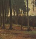 a forests fringe