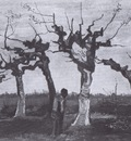 landscape with pruned willows, nuenen
