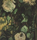 roses and beetle, saint remy