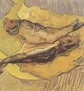 still life smoked herring, arles