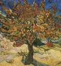 the mulberry, saint remy