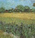 view of arles with irises in the foreground, arles