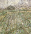 wheat field in rain, saint remy