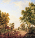 Immerzeel C Forest landscape Sun