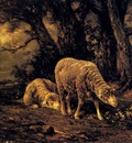 Jacque Charles Emile Sheep In A Forest