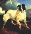 landseer portrait of neptune