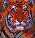 crl Tiger