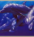 p Christian Lassen Dolphin Quest IXL