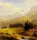 Leader Benjamin Williams The Wengen Alps Morning In Switzerland