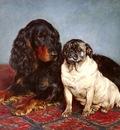 Bache Otto A Spaniel And A Pug