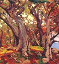 bischoff monterey cypress