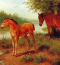 Basil Bradley A Mare and Her Foal, De
