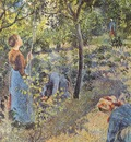 pissarro the apple pickers