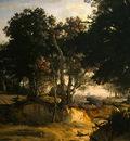 Corot Forest of Fontainebleau, c  1830, Detalj 1, NG Washing