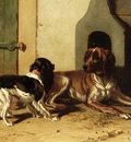 Cunaeus Conradyn A King Charles Spaniel And A Drentse Partridge Dog