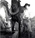 Dagnan Bouveret Horses at the Watering Trough