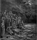 crusades crusaders on the nile