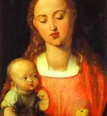Albrecht Durer Madonna of the Pear