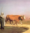 Treading out the Grain in Egypt