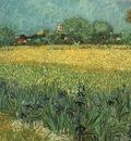 gogh arles irises