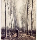 van Gogh Lane with Poplar Trees, early 1884, 54x39 cm, Rijks