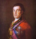 Francisco de Goya Portrait of the Duke of Wellington