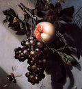 Grasdorp Willem Still life Sun