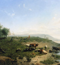 Haas de Leonardus Cattle at the side of the Rijn Sun
