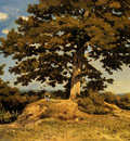 Harpignies Henri Joseph The Big Tree