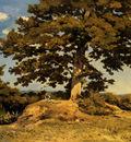 Harpignies Henri Joseph The Big Tree