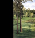 hallowed ground csg014 hazeltine 16th hole