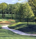 hallowed ground csg016 medinah country club 13th hole