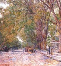hassam elms, east hampton, new york