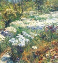 hassam the water garden