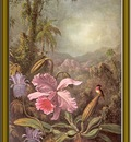 martin j heade orchids and hummingbird 1880 po amp