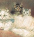 bs cc Persian Cat Her Kittens [Maude D Heaps]