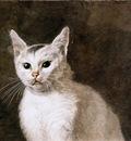 Hendriks Wybrand White cat Sun