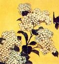 hokusai hydrangea and swallow
